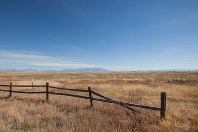 County Road 8S near Monta Vista NWR IMG_3834