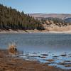 Beaver Creek  Reservoir IMG_3681