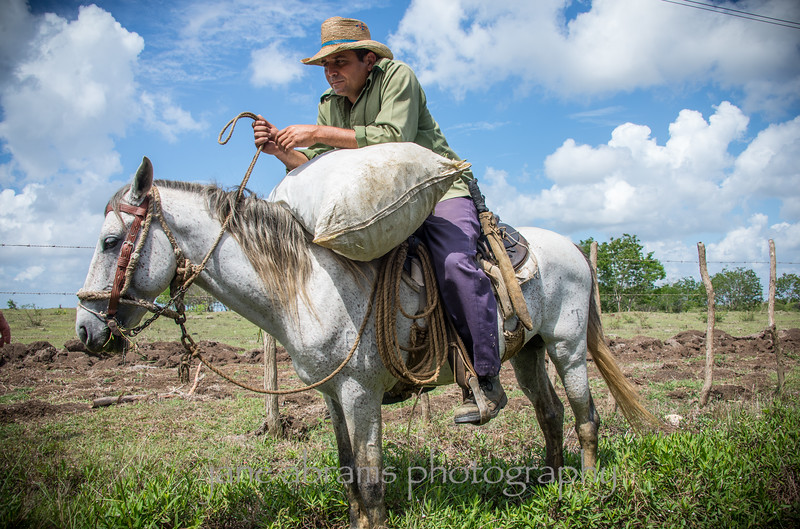 local farmer