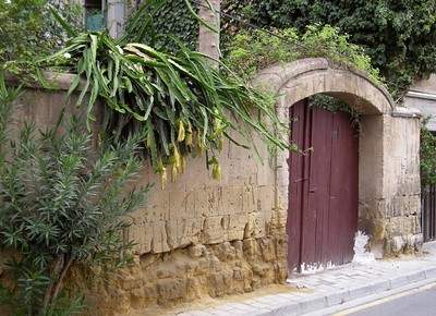garden entry in Nicosia