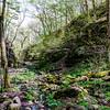 Gorge Pathway