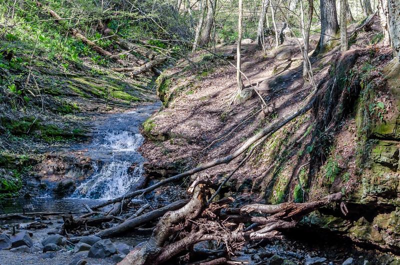 Parfrey Glen Running Water