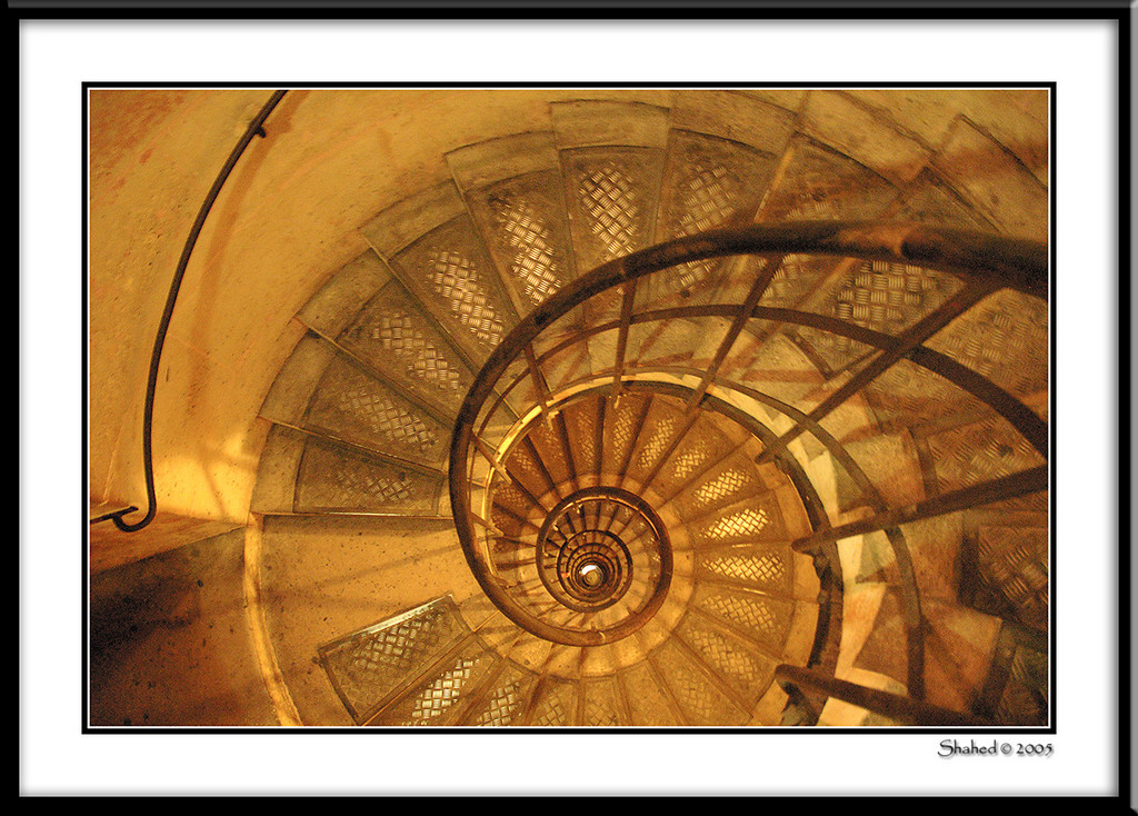 "Ref #8524-1N <span id=""caption""><div class=""photocredit"">photo © LenScape Photography</div></span>"