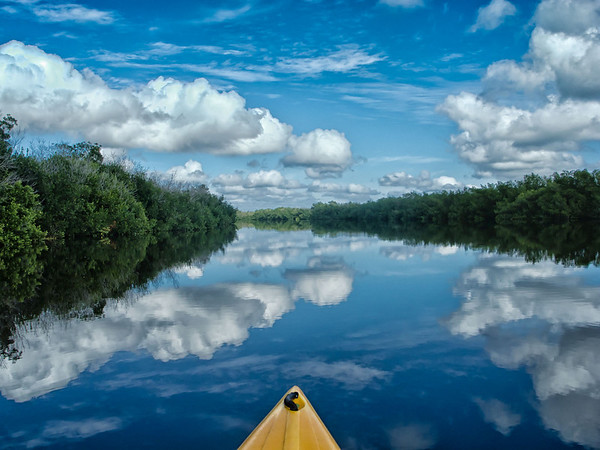 Lake reflection during Canoe trip in the Everglades, FL