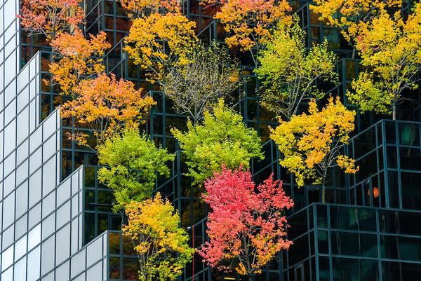 Green New York highrise
