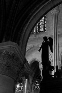 Angel Silhouette Notre Dame — Paris, France — May 2009
