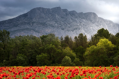 Sainte Victoire Mountain, Aix en Provence, France