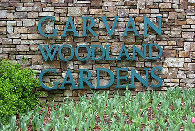 Garvan Woodland Gardens, Hot Springs, Arkansas (1)