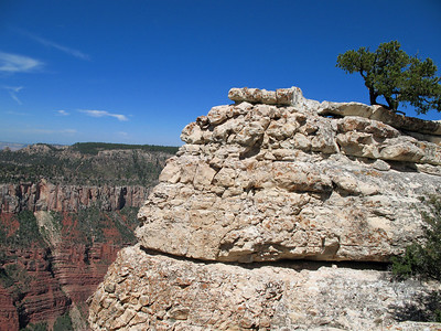 Grand Canyon, Arizona (11)