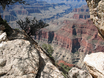 Grand Canyon, Arizona (10)