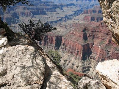 Grand Canyon, Arizona (10)