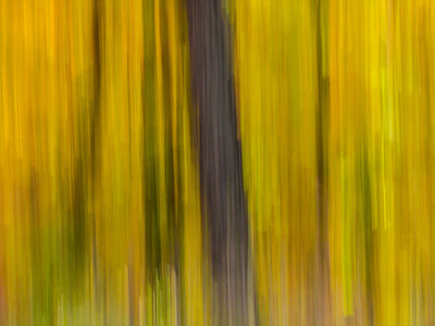 Fall Colors at Grand Marais MN  2012 Sep - Workshop Assignment: Motion Blur