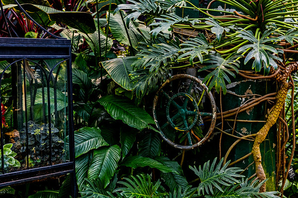 Chicago; Illinois; Lincoln Park Conservatory; USA