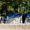 Port-au-Prince Tents