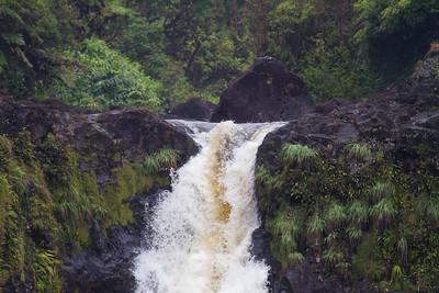 Akaka Falls  IMG_9367