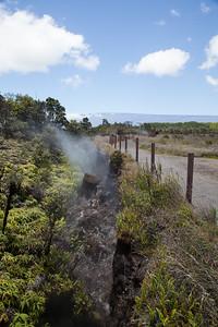 Hawaii Volcanos National Park IMG_7976