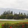 Princeville Golf Course IMG_7449