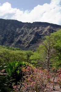 Koko Crater Botanical Garden IMG_8660