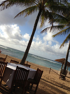 dinner at Turtle Bay
