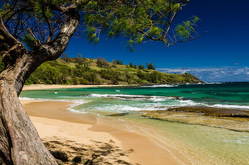 Great Day at Mola'a Beach Kauai Hawaii