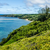 Another Great View at Kauai Hawaii