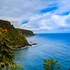 Great View on the Road to Hana Maui