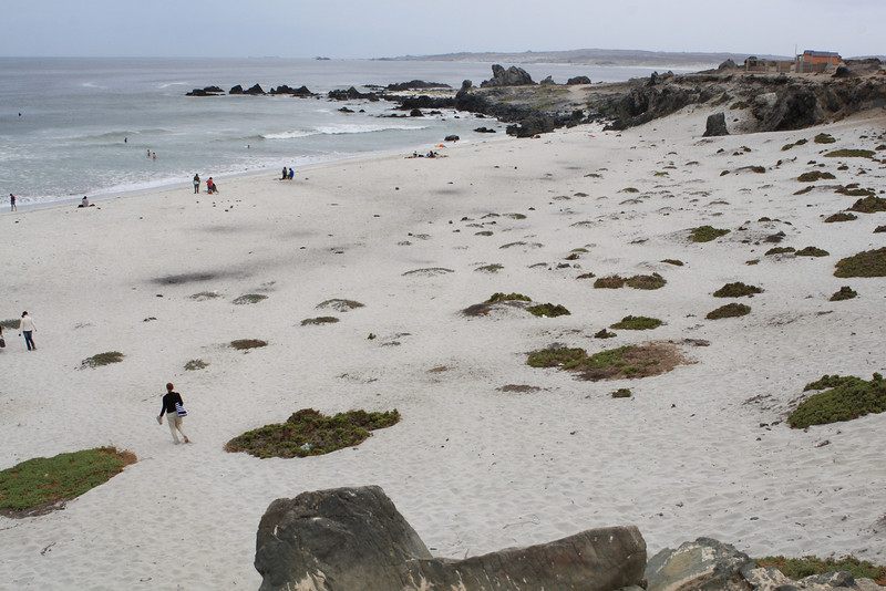 A fantastic and quiet beach on the coast of Chile