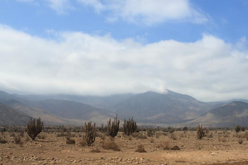 The desert landscape heading back to La Serena from the small coastal village.