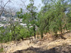 Starting the hike up to San Cristobal