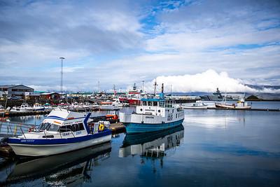 rejkjavik harbour