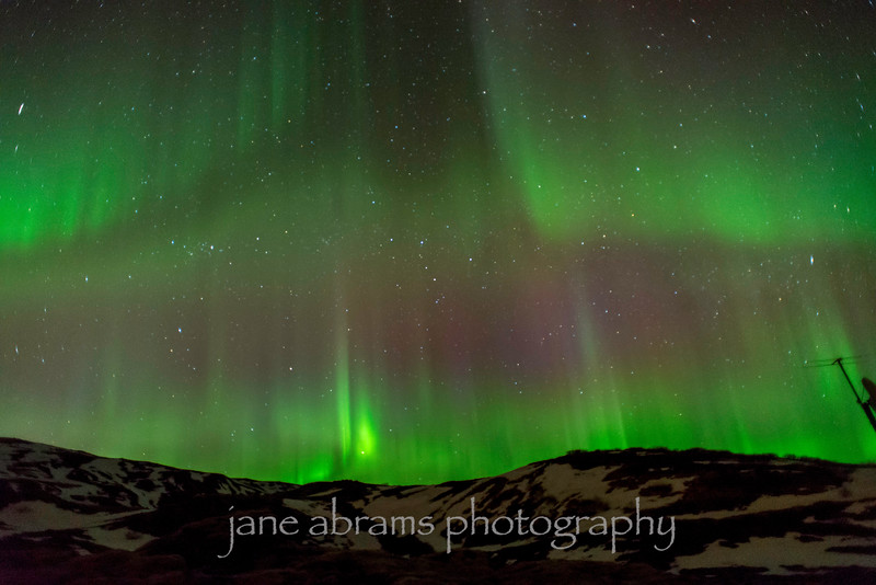 Aurora Borealis Iceland 836