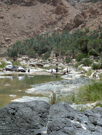 in Wadi Tiwi