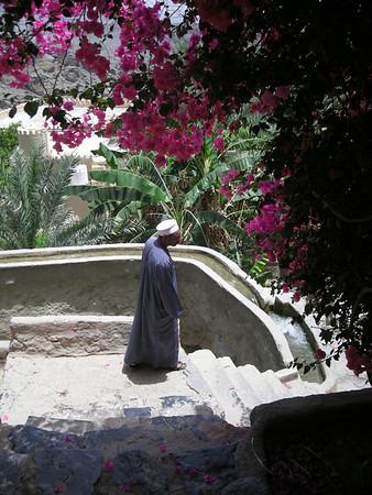 along the hillside fulaj in Misfat al-A'briyeen.