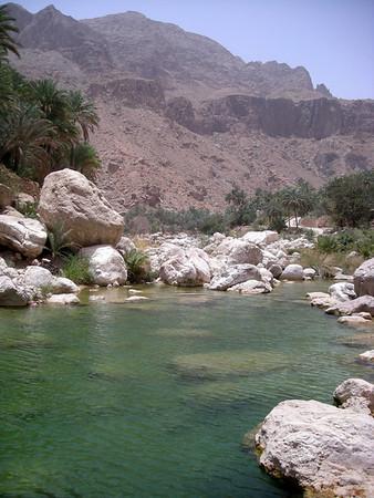 in Wadi Tiwi