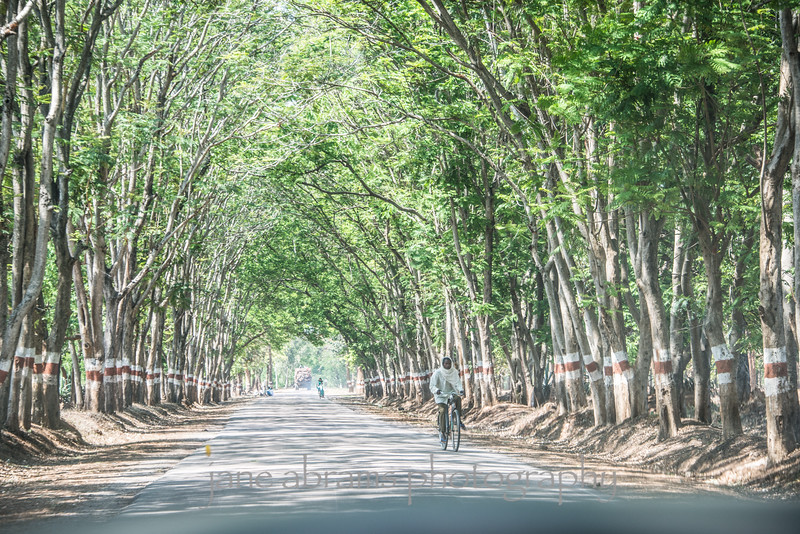 road to Kanha