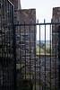 Blarney Castle Grounds<br /> December 2010