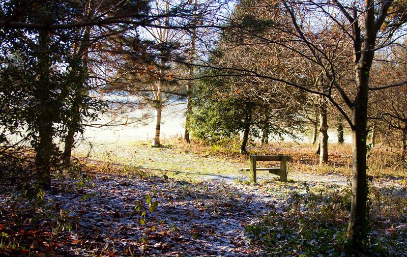 Kilkenny Castle Grounds<br /> December 2010