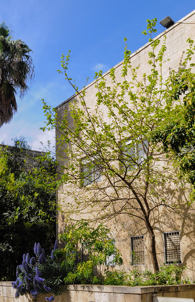Schocken Library, Jerusalem (Erich Mendelsohn, 1936); photo by M. Weatherby