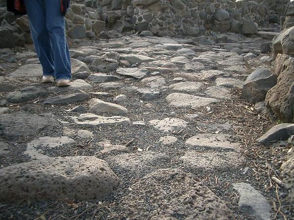 A path where Jesus walked