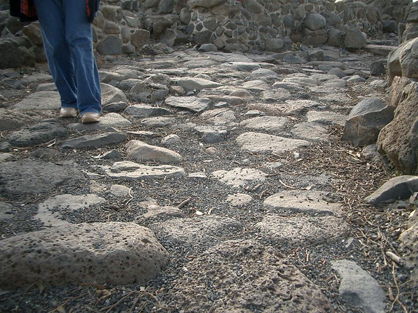 A path where Jesus walked