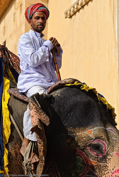 Elephant driver at the Amber Fort