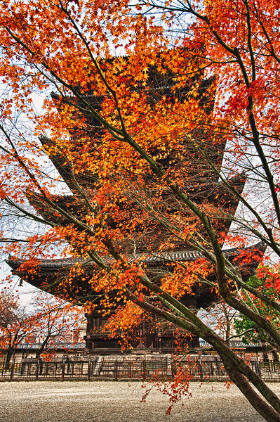 Pagoda at Hoji Temple, Kyoto, Japan