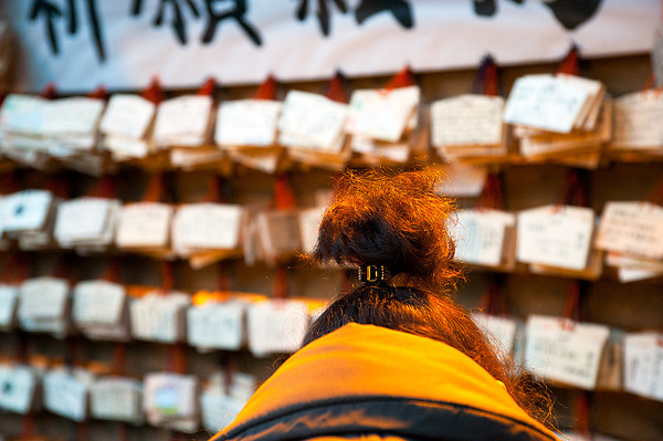 Leaving New Year's wishes, Meiji Shrine, Tokyo, Japan