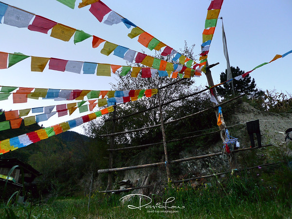 Prayer flags - Its a religious thing for Tibetans to hang prayer flag. Scriptures of good blessings are written on the colorful flags often found strung along mountain ridges and peaks or around their houses.