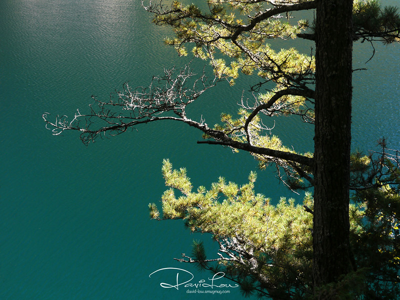 Panda Lake - The crystal clear turquoise colour water.