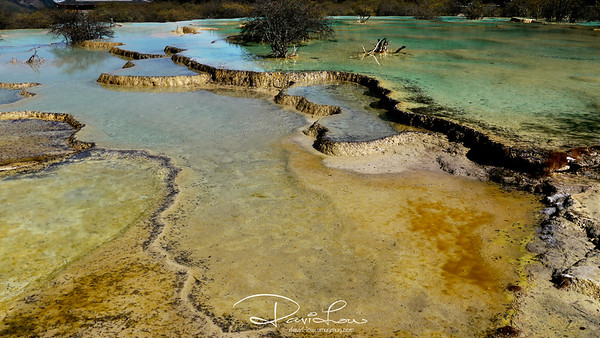 Multi coloured Pond 2