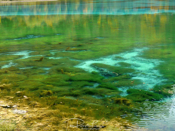 The natural beauty of the site lies in the over 100 strange-coloured lakes and some of them are crystal clear. They are the result of karst erosion and deposits or a wealth of beautiful strange looking algae.