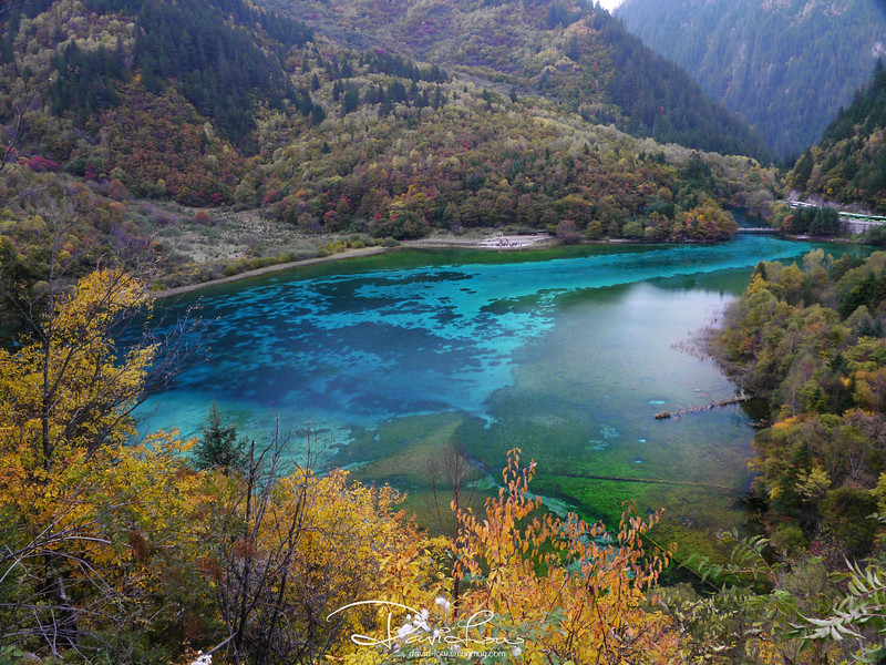 Five-Coloured Lake - Calcium and magnesium levels are extremely high in the water that only very special breed of fish survive in isolated pockets of water. These mineral deposits, combined with the green-yellow algae on the off-white travertine of the bedrock, give the pool a great swathe of aqua marine pastels.