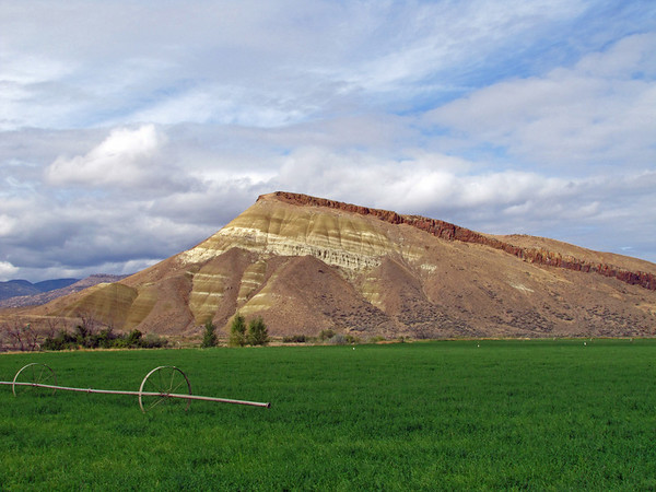 John Day Fossil Beds National Monument, Oregon (Painted Hills Unit) (9)