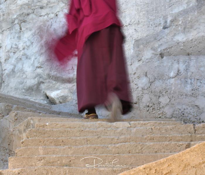 Mystery monk